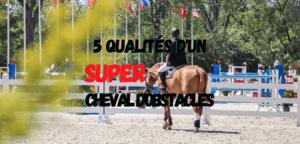 Read more about the article 5 Qualités d'un (Super) Cheval d'Obstacle