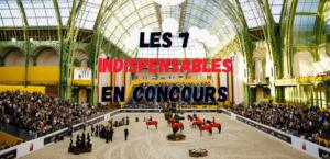 Read more about the article 7 Indispensables du Cavalier en Concours