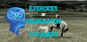 Read more about the article Exercices de Visualisation pour Cavaliers