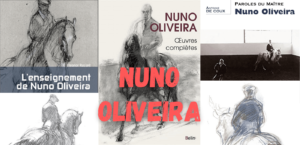 Read more about the article Nuno Oliveira