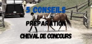 Read more about the article Préparation Physique et Mentale du Cheval de Concours