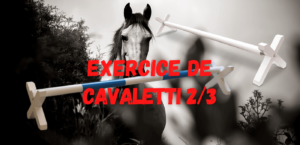 Read more about the article Exercice de Cavaletti 2/3