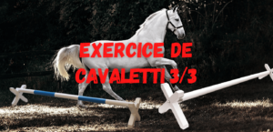Read more about the article Exercice de Cavaletti 3/3