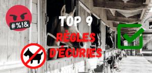 Read more about the article TOP 9 Règles d'Écuries