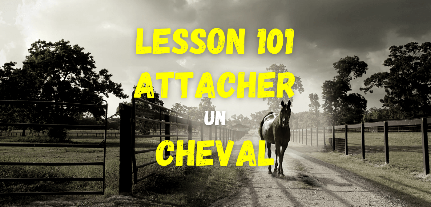 You are currently viewing Lesson 101 – Attacher un cheval