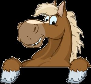 cheval au boxe