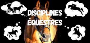 disciplines équestres