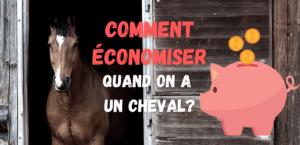 Read more about the article 8 façons d'économiser quand on a un cheval