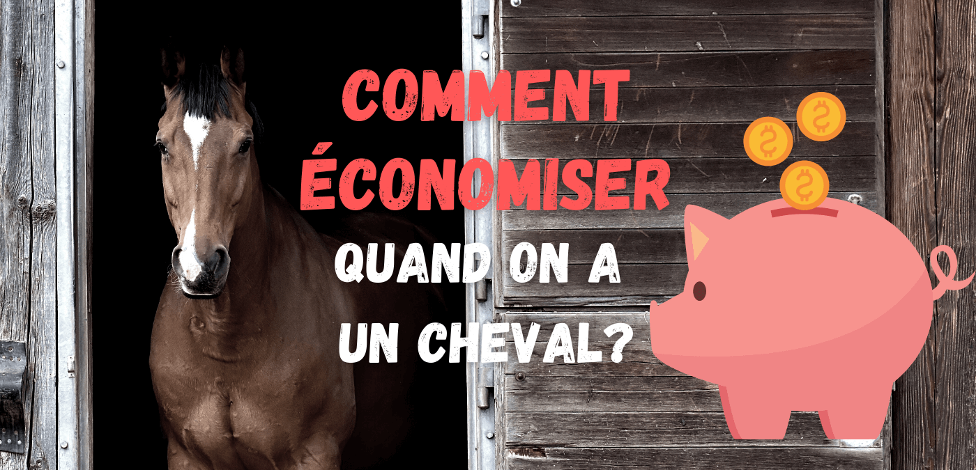 You are currently viewing 8 façons d'économiser quand on a un cheval