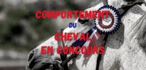 Read more about the article Le comportement du cheval en concours
